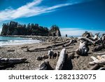 Quileute Reservation Beach