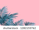 green palm fronds isolated on a ... | Shutterstock .eps vector #1282153762