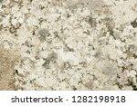 grey granite rock with moss... | Shutterstock . vector #1282198918