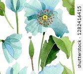 blue poppy botanical flower....   Shutterstock . vector #1282416415
