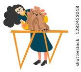 dog grooming  grooming... | Shutterstock .eps vector #1282423018