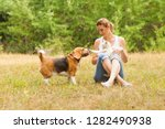 Stock photo pets playing with each other near their owner 1282490938