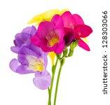 Bouquet Of Freesias Flower ...