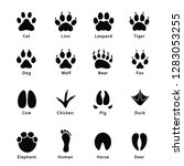 animals footprints  paw prints. ... | Shutterstock .eps vector #1283053255
