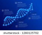 isometric dna helix  dna... | Shutterstock .eps vector #1283125702