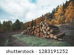 side wide angle view of a heap... | Shutterstock . vector #1283191252