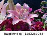 pink flower florist bouquet... | Shutterstock . vector #1283283055