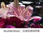 pink flower florist bouquet... | Shutterstock . vector #1283283058