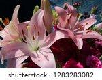 pink flower florist bouquet... | Shutterstock . vector #1283283082