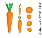 carrot vector. carrot slice ... | Shutterstock .eps vector #1283312368