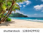 sandy beach with palms and... | Shutterstock . vector #1283429932