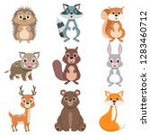 Stock vector cute forest animals and birds set squirrel hare boar raccoon hedgehog fox bear deer cartoon 1283460712