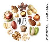 realistic nuts round concept   Shutterstock .eps vector #1283505322