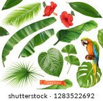botany. set of leaves and... | Shutterstock .eps vector #1283522692