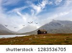 lonely hut and wild geese at a...