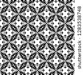 monochrome geometric shapes and ...   Shutterstock .eps vector #1283538748