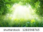 juicy young grass and foliage... | Shutterstock . vector #1283548765