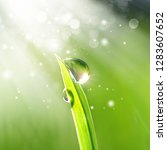 beautiful water  drops sparkle... | Shutterstock . vector #1283607652