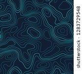 contour lines. actual... | Shutterstock .eps vector #1283729548
