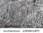 rocks by the sea for background ... | Shutterstock . vector #1283841895