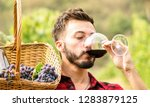 young man enjoying red wine... | Shutterstock . vector #1283879125