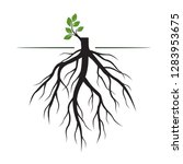 tree roots and germinate limb.... | Shutterstock .eps vector #1283953675