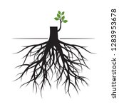 tree roots and germinate limb.... | Shutterstock .eps vector #1283953678