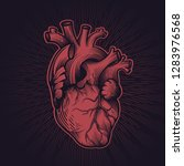 human heart in engraving... | Shutterstock .eps vector #1283976568