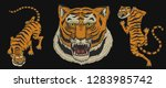 Asian Tigers In Vintage...
