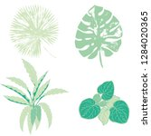 vector set of green and... | Shutterstock .eps vector #1284020365