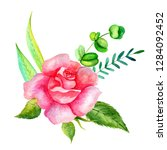 set of watercolor flowers and... | Shutterstock . vector #1284092452