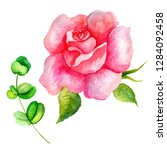 set of watercolor flowers and... | Shutterstock . vector #1284092458