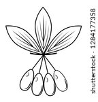 a branch of a beautiful dogwood ...   Shutterstock .eps vector #1284177358