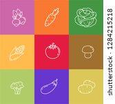 different vegetables thin line... | Shutterstock .eps vector #1284215218