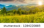 panorama of a beautiful grassy... | Shutterstock . vector #1284220885