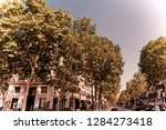 trees on a crossroad in paris ... | Shutterstock . vector #1284273418