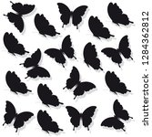 black butterfly  isolated on a... | Shutterstock .eps vector #1284362812