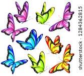 beautiful color butterflies set ... | Shutterstock .eps vector #1284362815