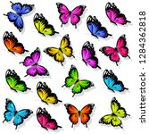 beautiful color butterflies set ... | Shutterstock .eps vector #1284362818