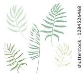 vector set of green and khaki... | Shutterstock .eps vector #1284526468