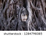 the stone buddha head entwined... | Shutterstock . vector #1284798385