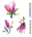 magnolia flowers. watercolor... | Shutterstock . vector #1284898108