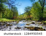 ostravice river spring as very... | Shutterstock . vector #1284950545