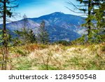 lysa hill in beskydy mountains... | Shutterstock . vector #1284950548