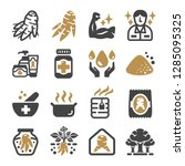 ginseng icon set vector and... | Shutterstock .eps vector #1285095325