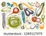 vector collection of hand drawn ... | Shutterstock .eps vector #1285117375
