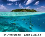 Split View To A Tropical Island ...