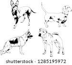 vector drawings sketches... | Shutterstock .eps vector #1285195972