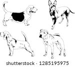 vector drawings sketches... | Shutterstock .eps vector #1285195975
