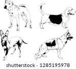 vector drawings sketches... | Shutterstock .eps vector #1285195978